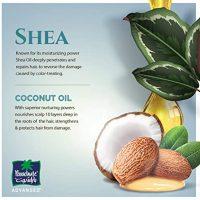Shea & Coconut Hair Oil