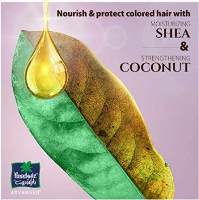 Nourish Hair with Shea Oil
