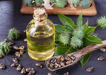 Oil for Dandruff